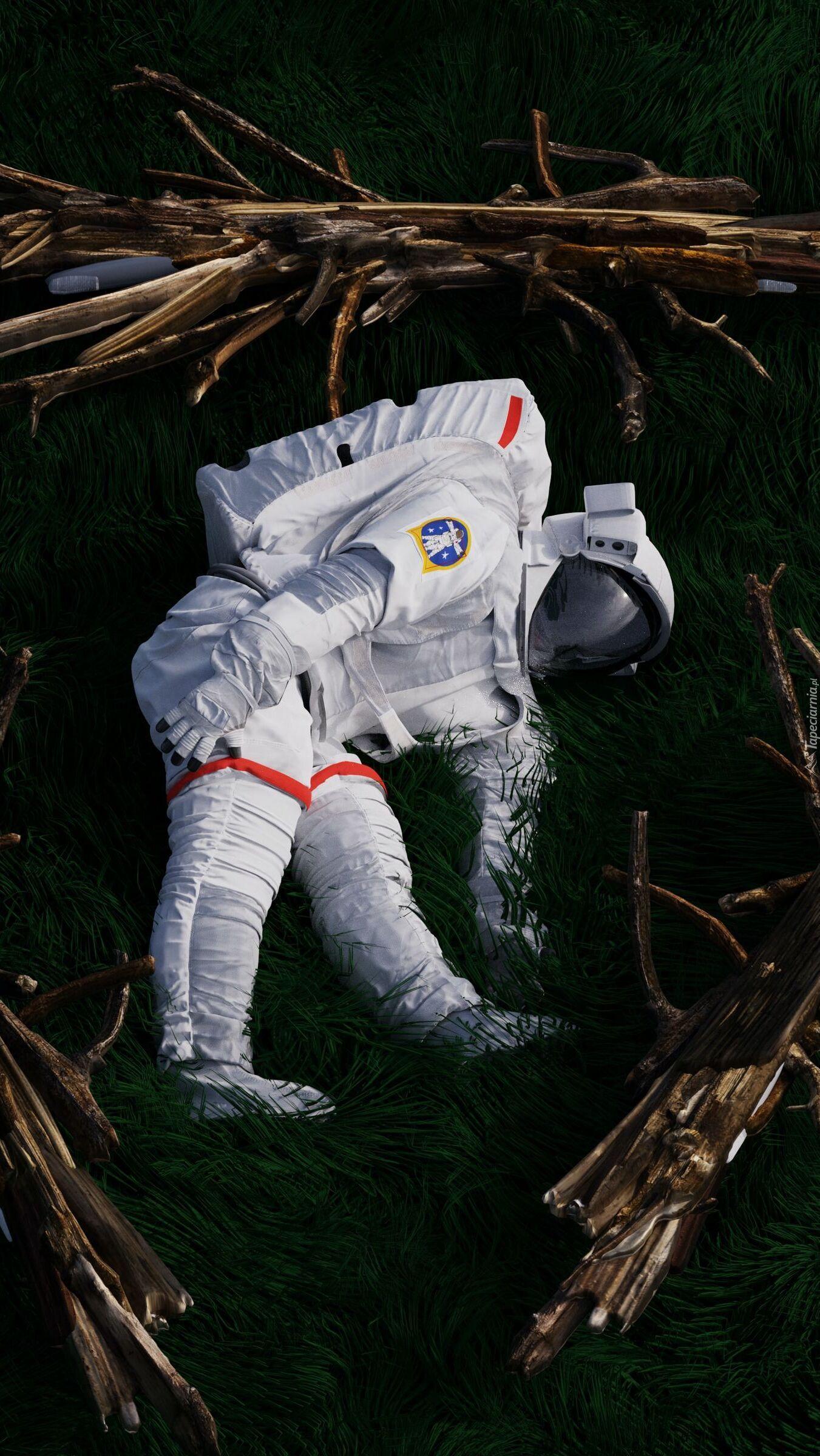Astronauta na trawie