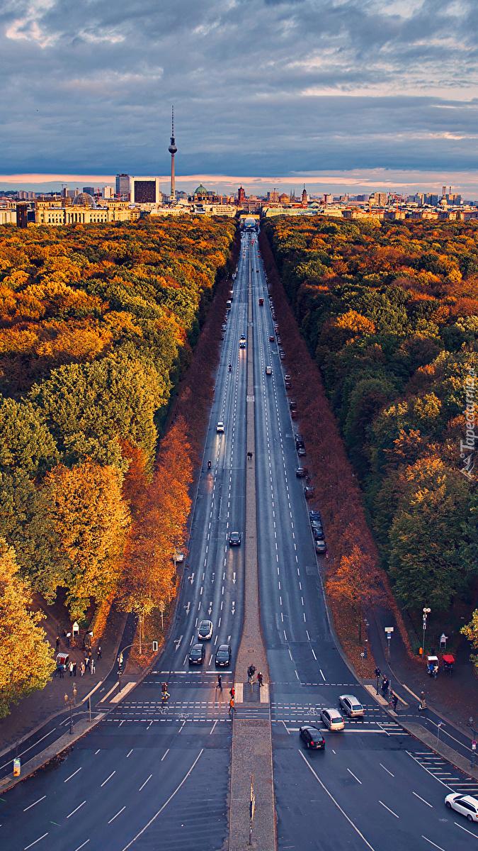 Autostrada wśród jesiennych drzew w Berlinie