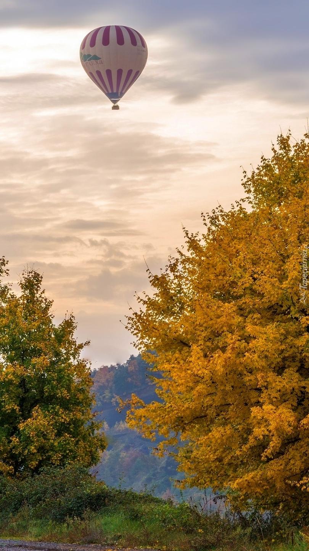 Balon nad kolorowymi drzewami