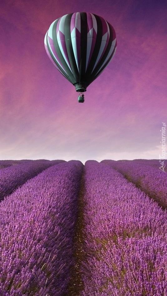 Balon nad lawendowym polem