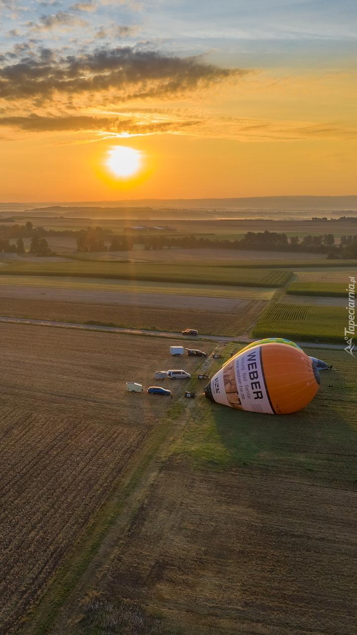 Balony na polu