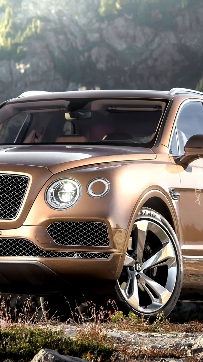Bentley Bentayga przodem