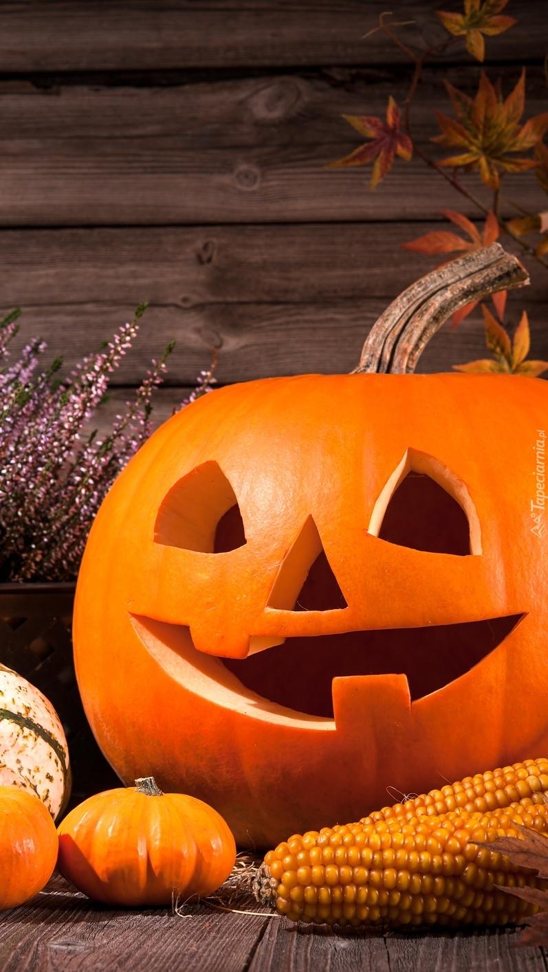 Bezzębna halloweenowa dynia