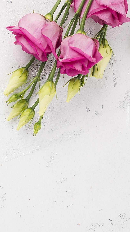 Biała i różowa eustoma