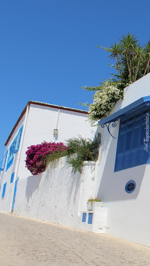Białe domy w Tunezji