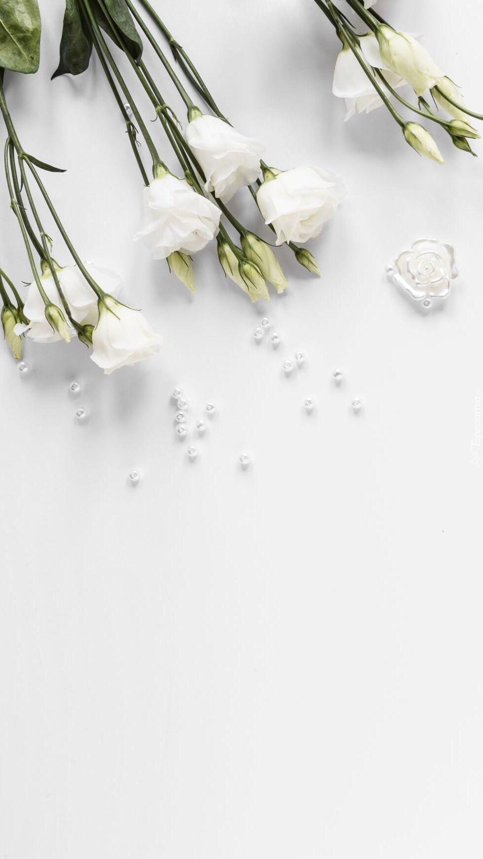 Białe eustomy