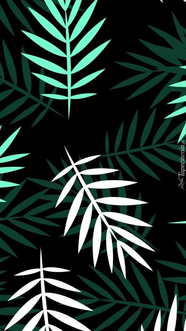 Białe i zielone liście
