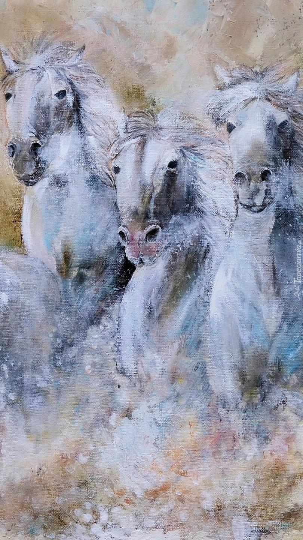 Białe konie w grafice