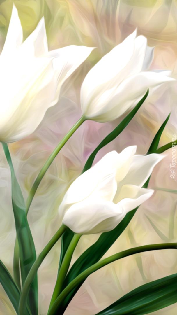 Białe tulipany w grafice