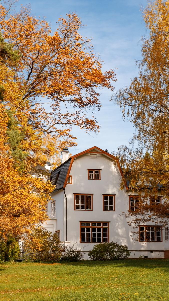 Biały dom pod jesiennymi drzewami