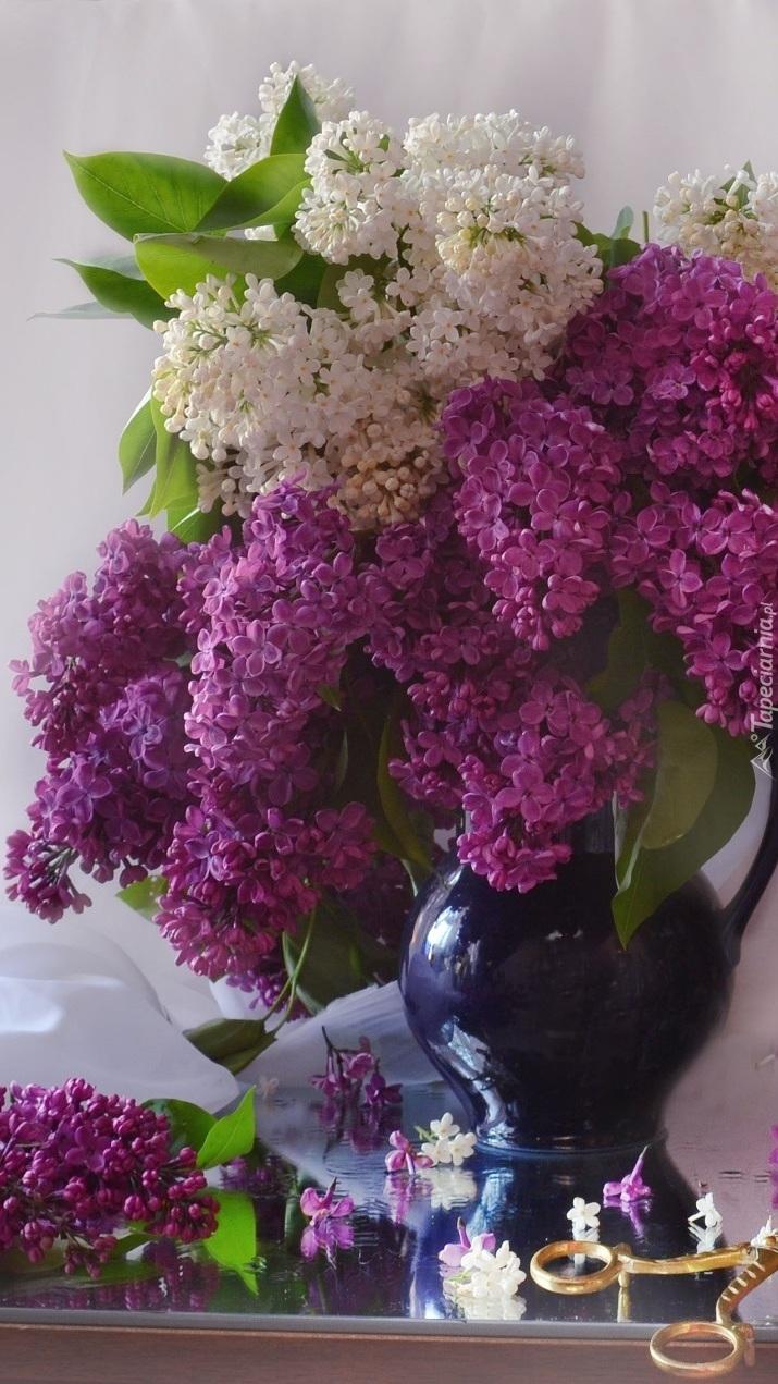 Biały i fioletowy bez w wazonie