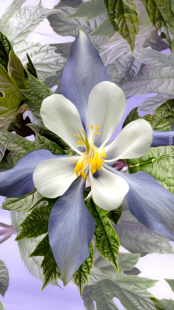 Biały kwiat w grafice