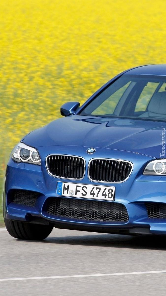 BMW F10 przy polu rzepakowym
