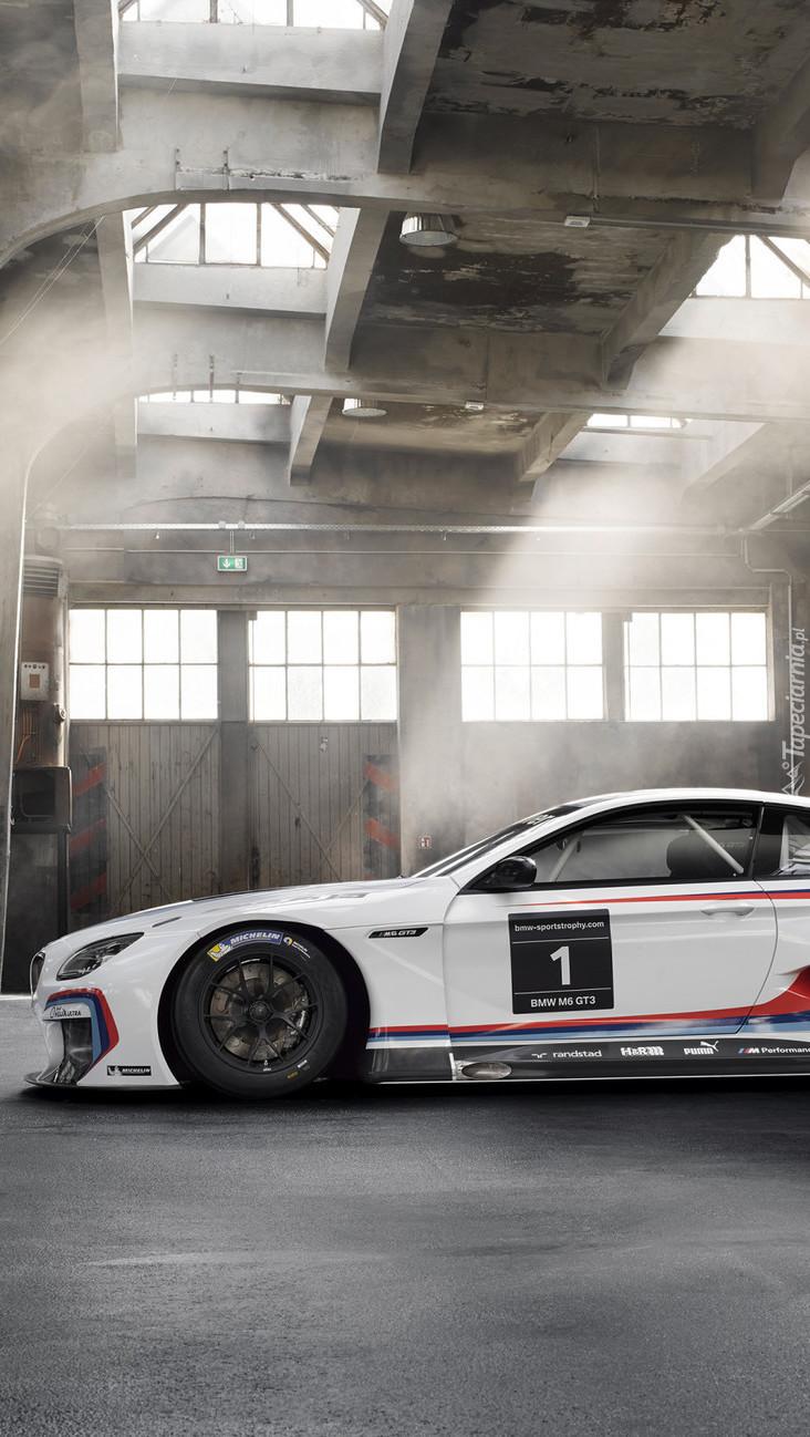 BMW M6 F13 GT3