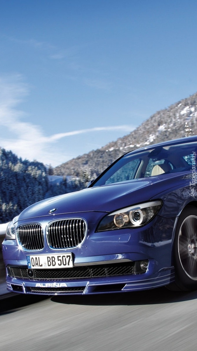 BMW Seria 7 Tuning Alpine