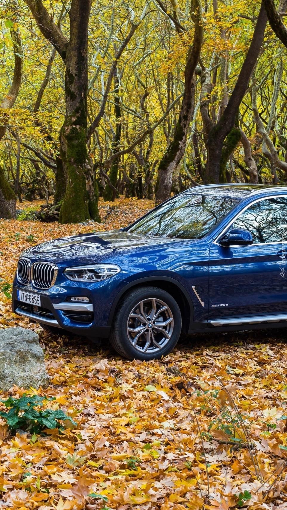 BMW X3 w jesiennym lesie