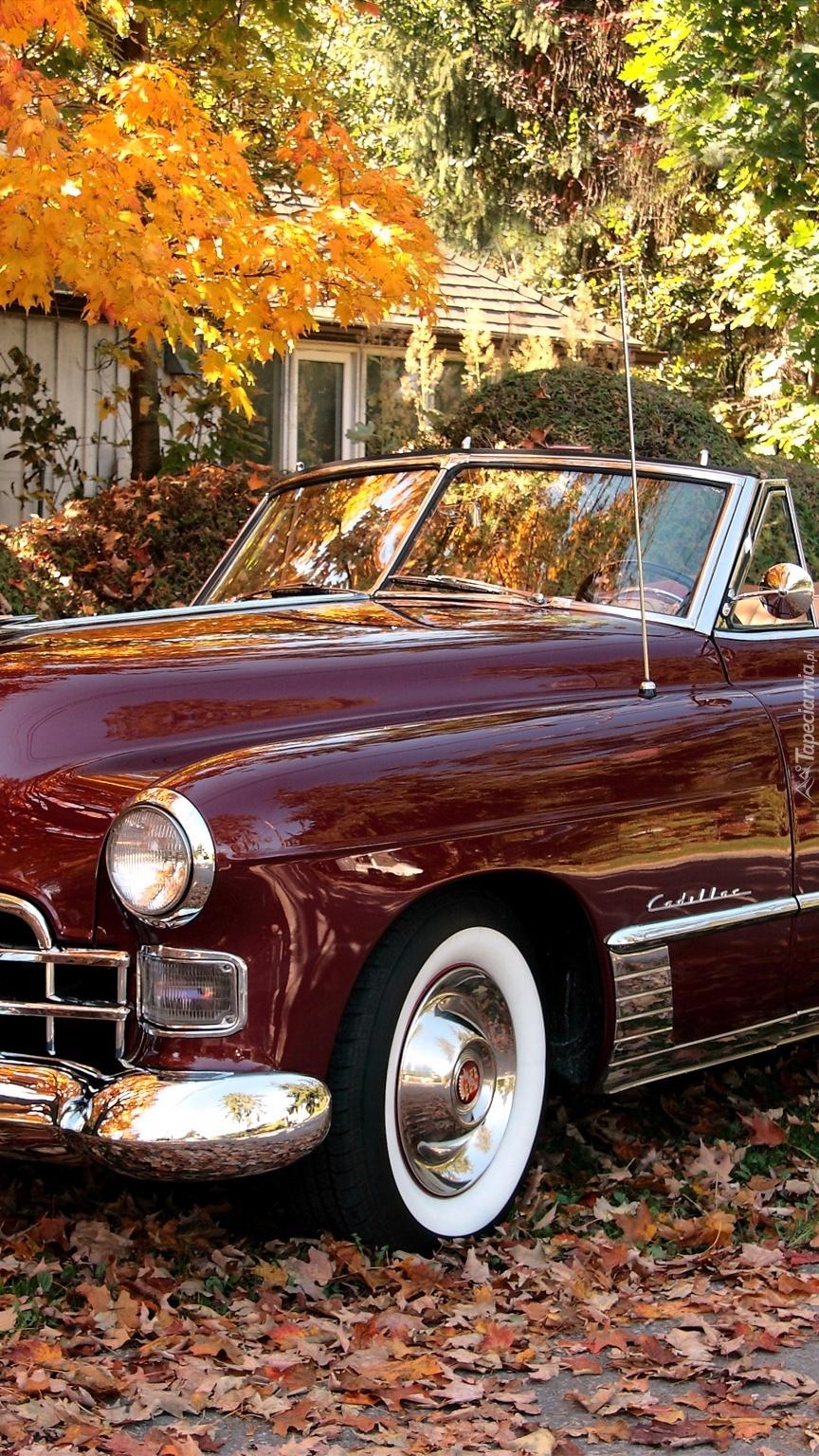 Bordowy Cadillac przed domem jesienią