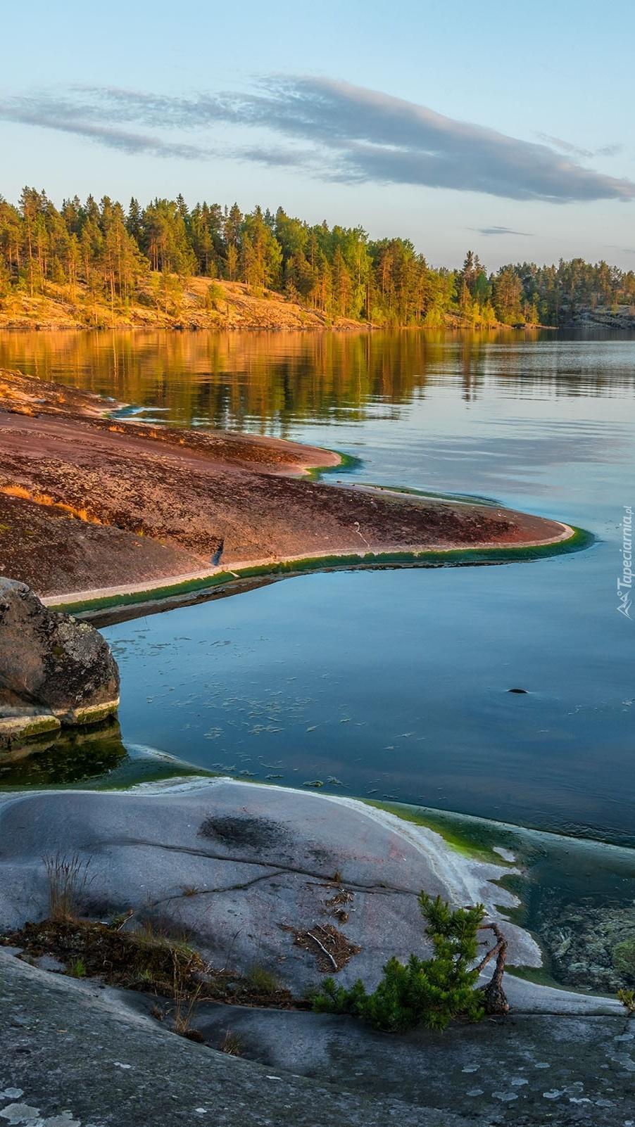 Brzeg nad jeziorem Ładoga