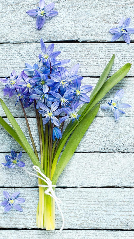 Bukiecik z niebieskich kwiatów