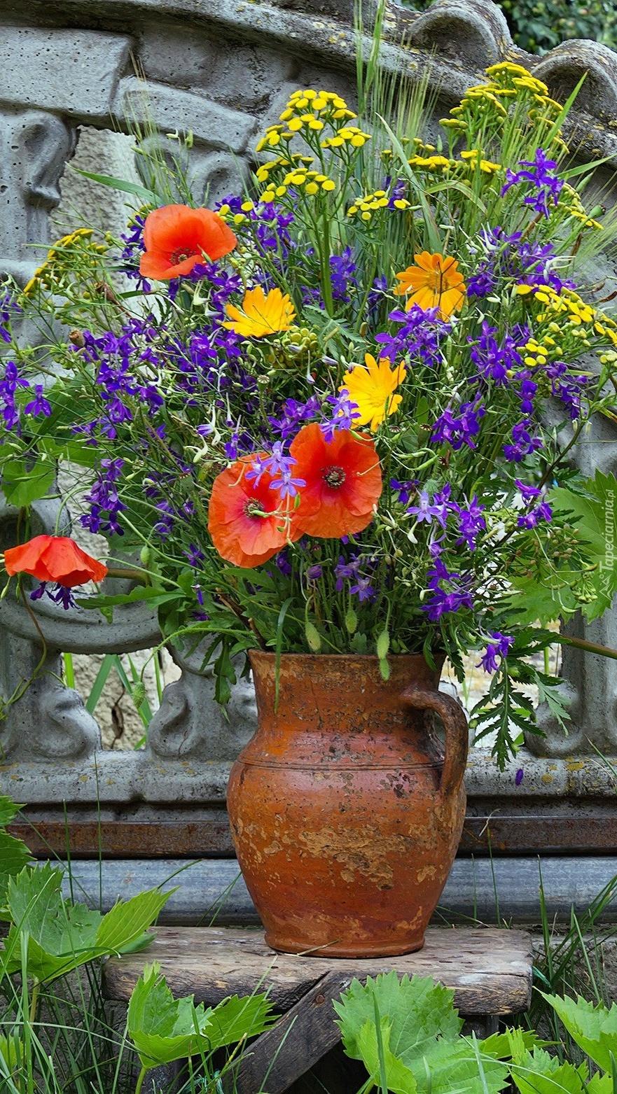 Bukiet polnych kwiatów w dzbanku