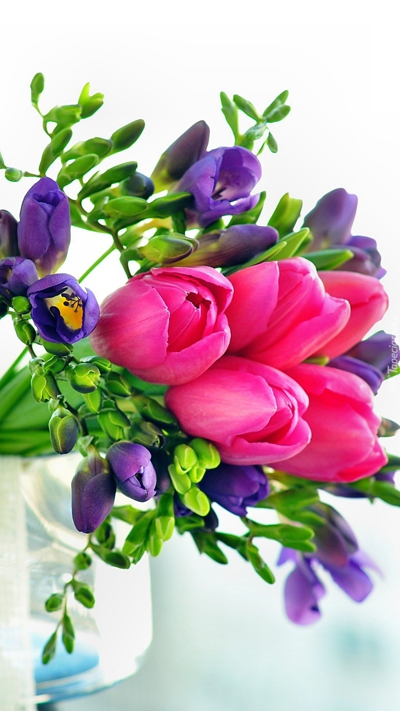 Bukiet z frezji i tulipanów