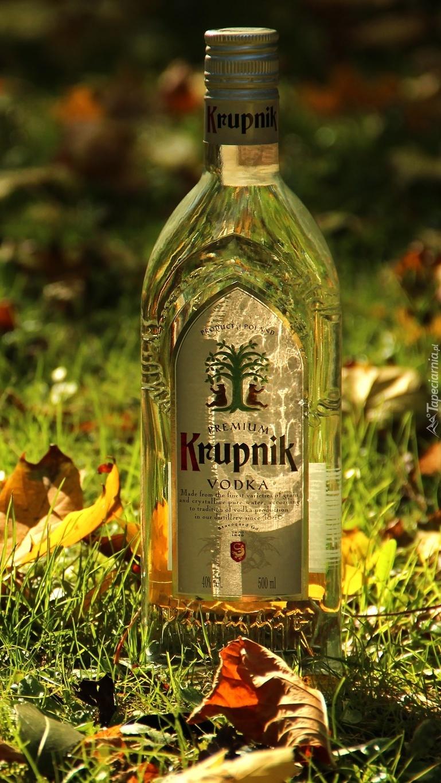 Butelka Krupniku w trawie