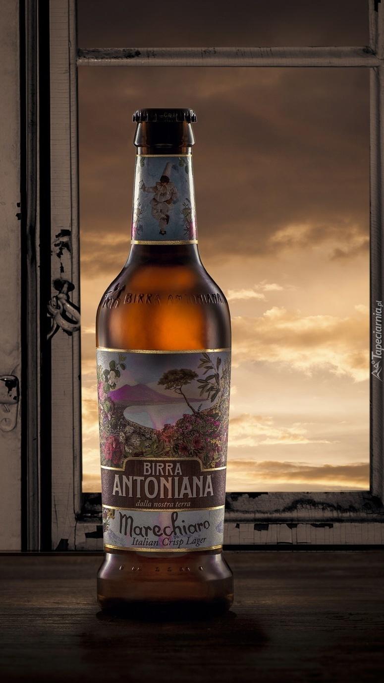 Butelka piwa przy oknie