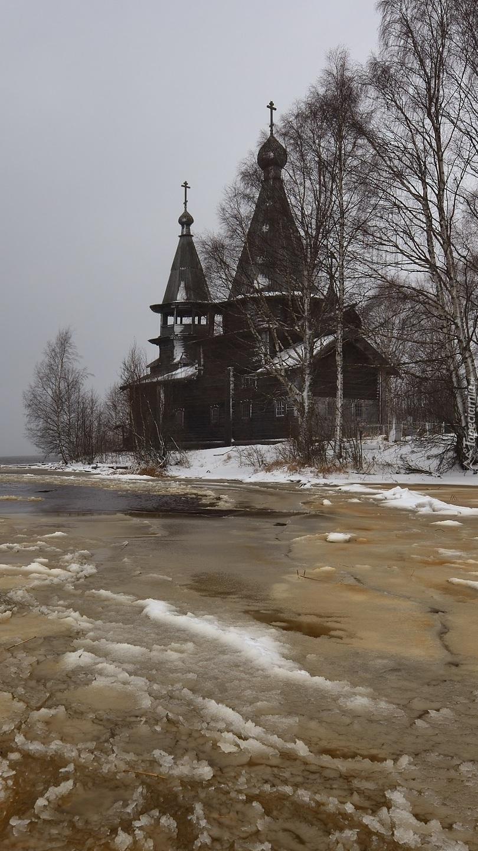 Cerkiew pośród drzew