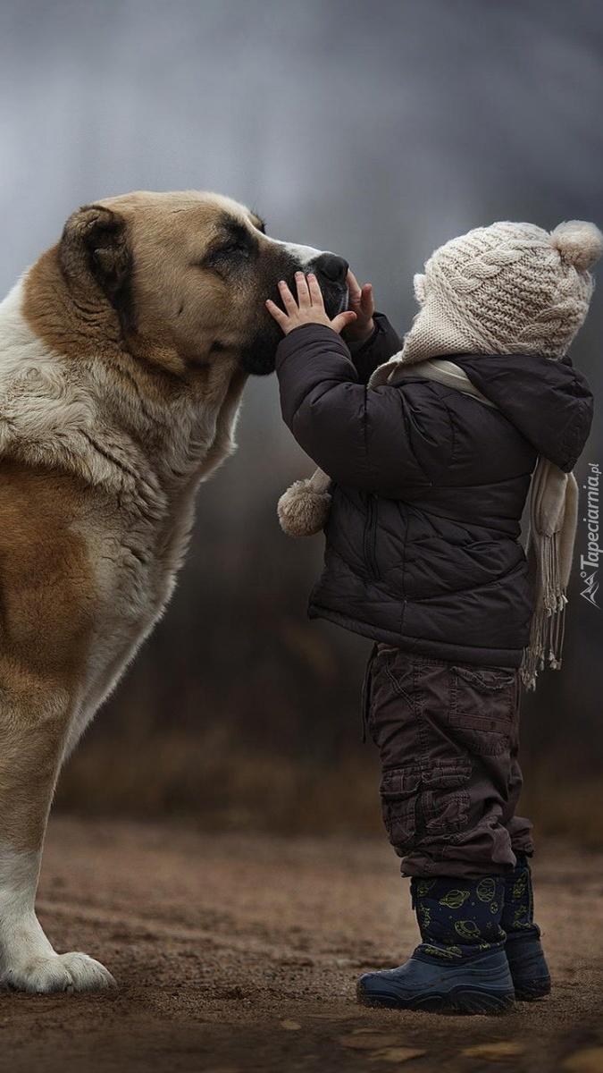 Chłopczyk i jego pies