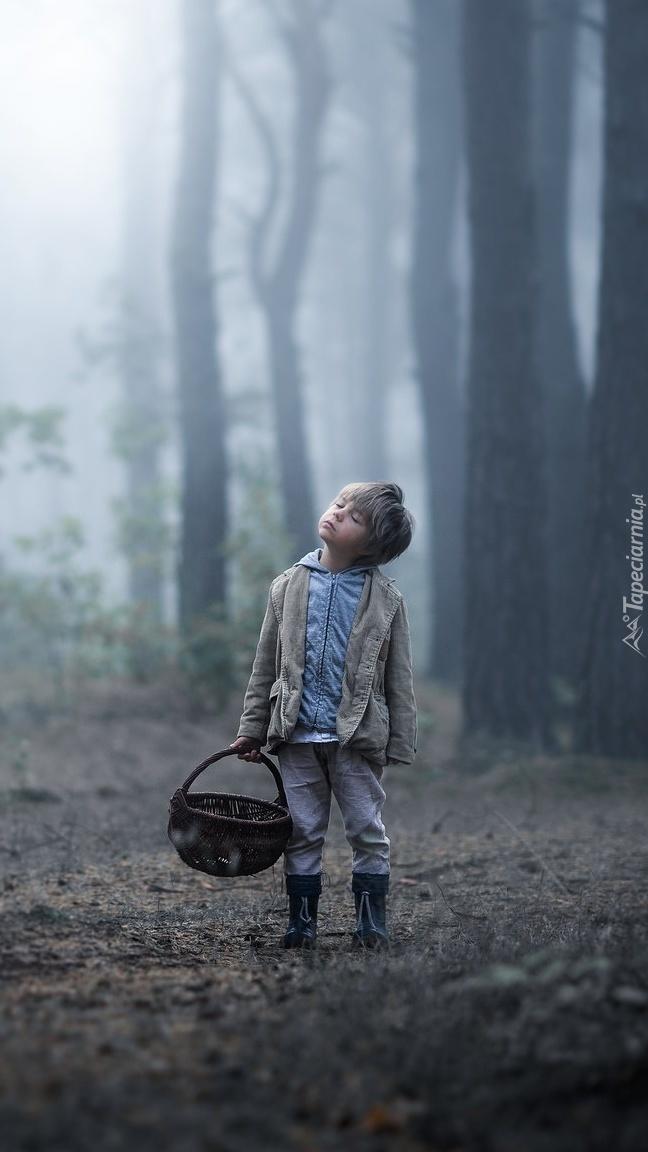 Chłopczyk z koszem w lesie