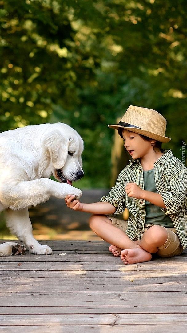 Chłopiec z labradorem retriever