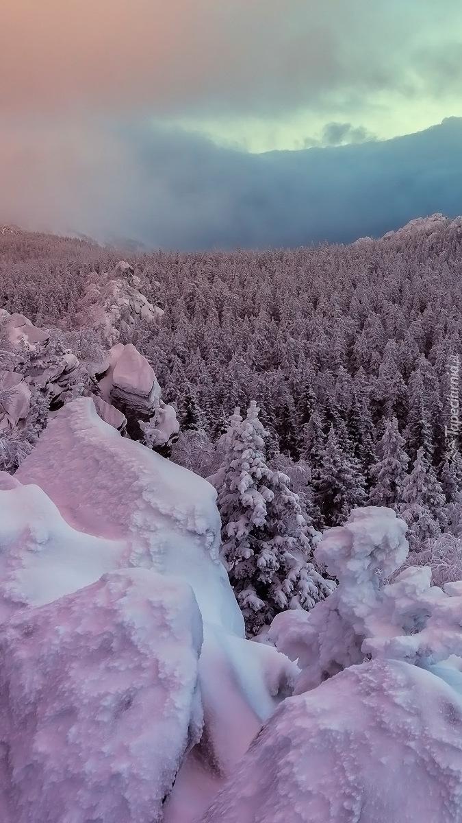 Chmury nad ośnieżonym lasem w górach