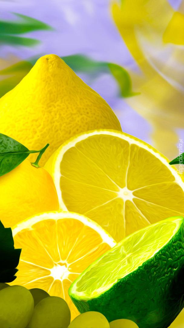 Cytryny i limonka