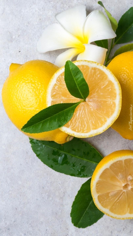 Cytryny przyozdobione listkami i plumerią