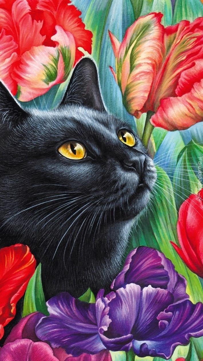 Czarny kot wśród tulipanów