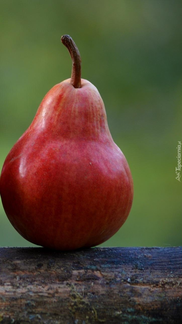 Czerwona gruszka
