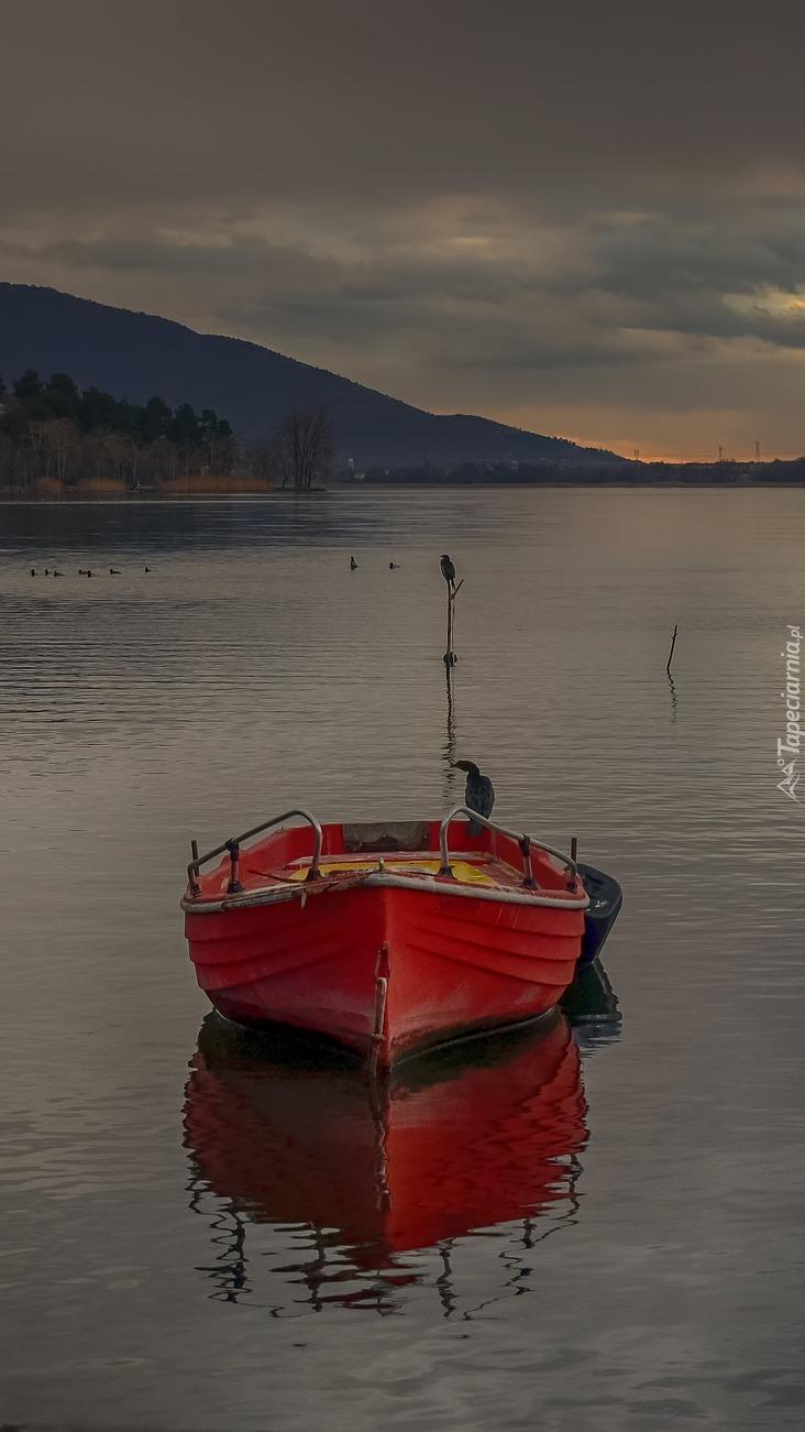 Czerwona łódka na jeziorze Kastoria w Grecji