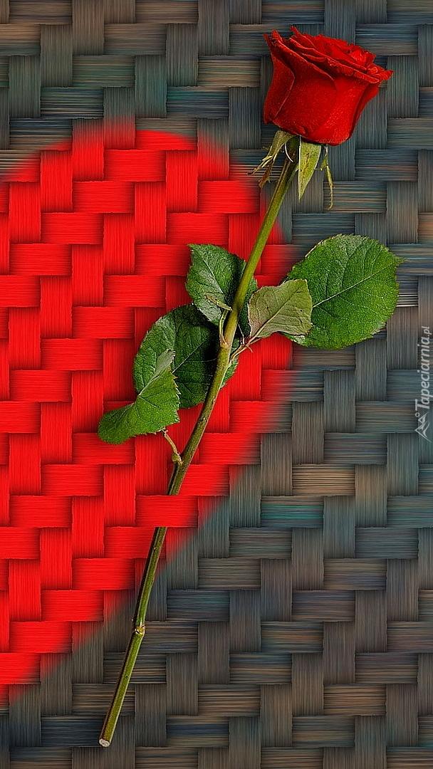Czerwona róża na sercu