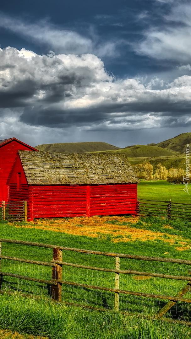 Czerwona stodoła na polu