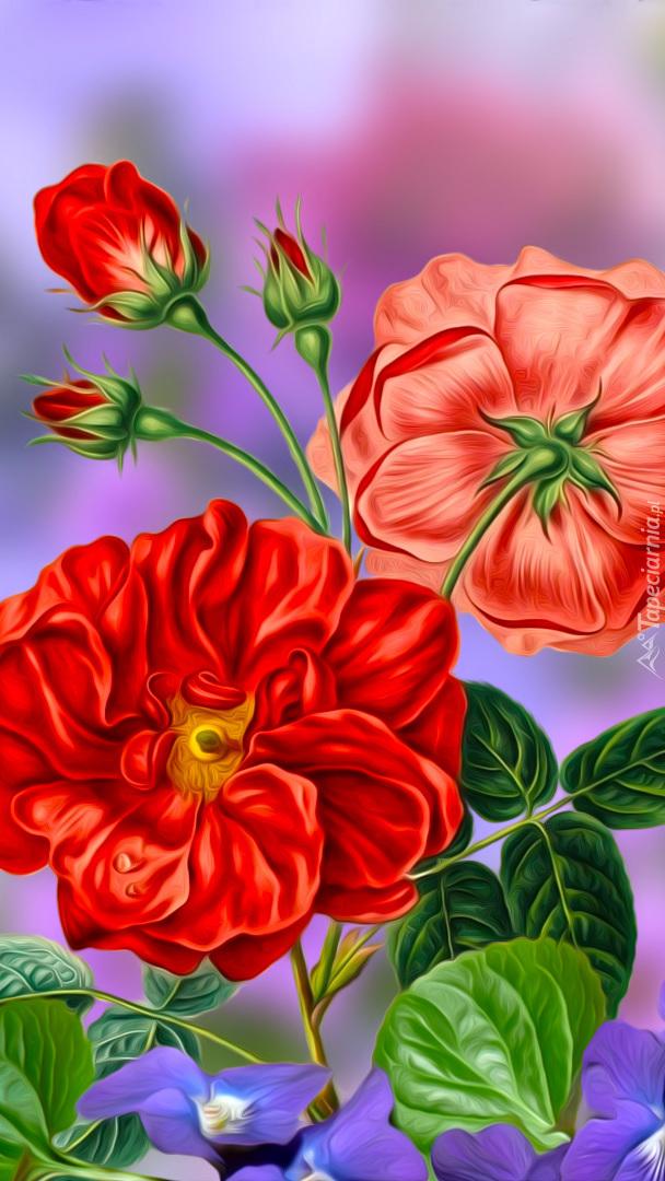 Czerwone kwiaty i pąki