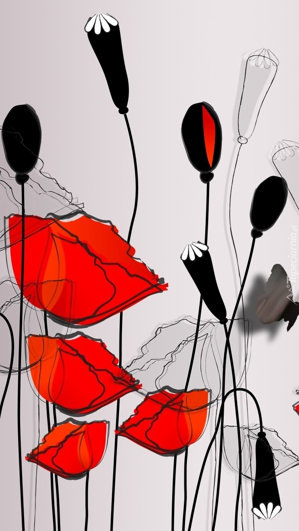 Czerwone maki w grafice