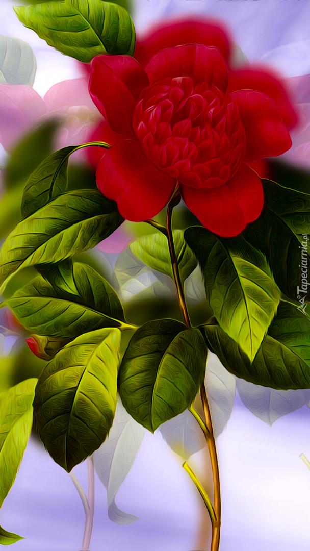 Czerwony kwiatek z listkami