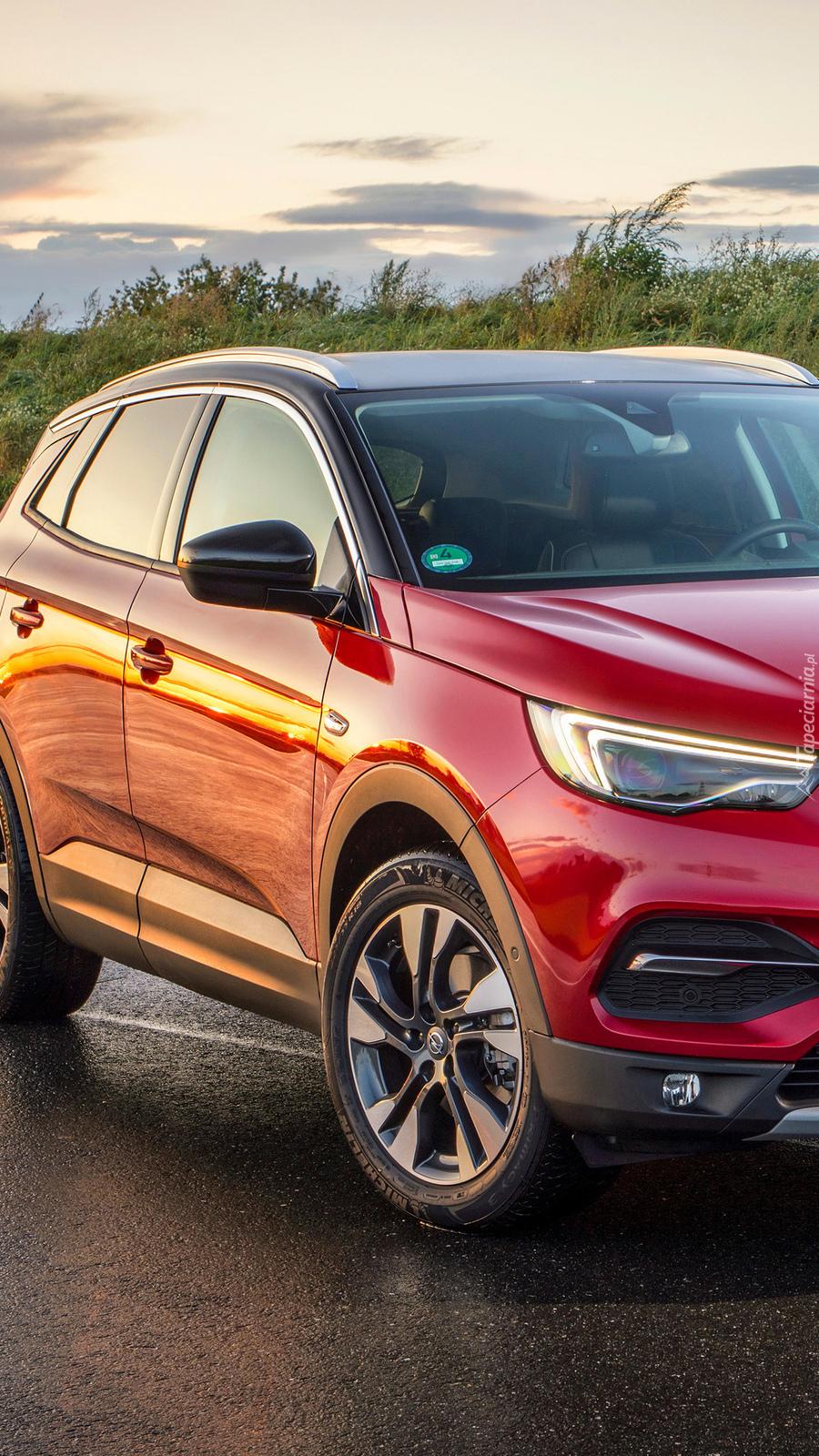 Czerwony Opel Grandland X