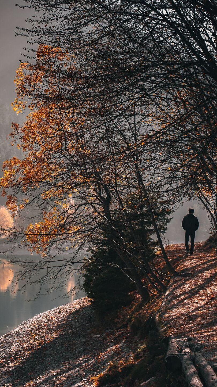 Człowiek na ścieżce pod jesiennymi drzewami