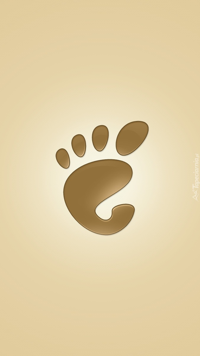 Cztery palce u stopy