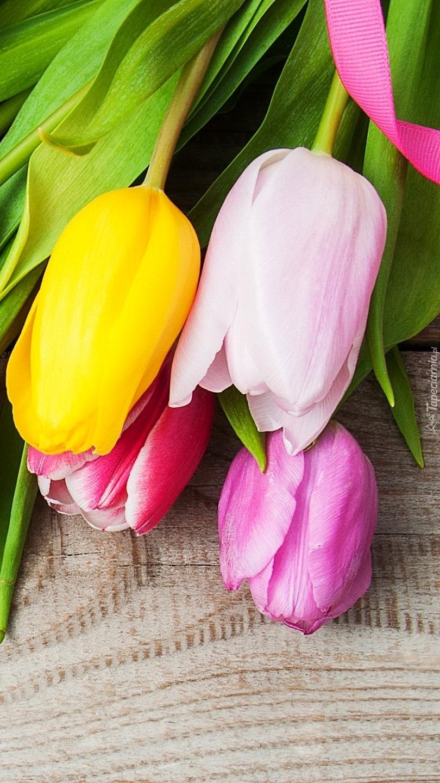 Cztery tulipany z różową wstążką