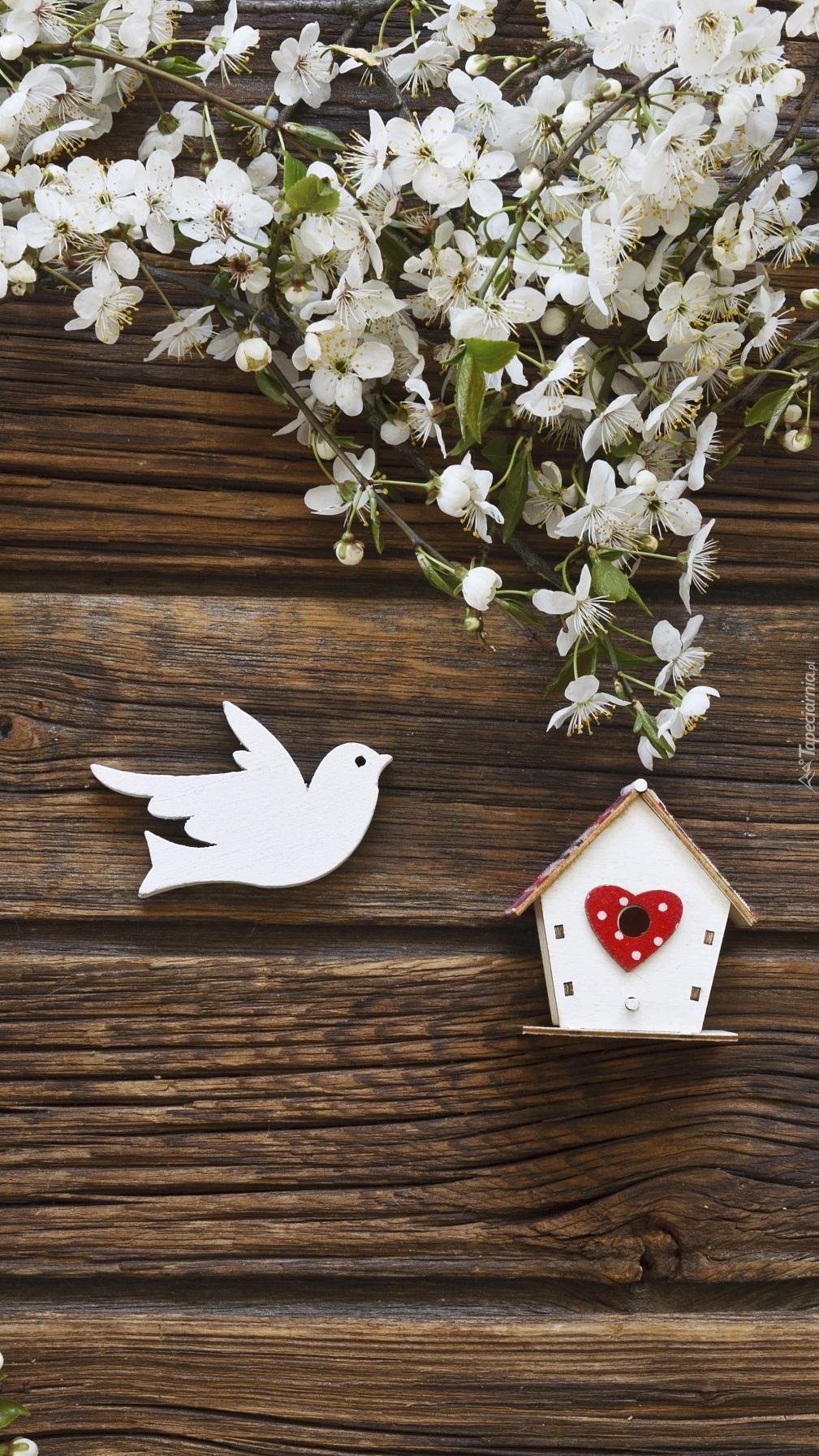 Dekoracyjny ptaszek i karmnik pod gałązkami białych kwiatów