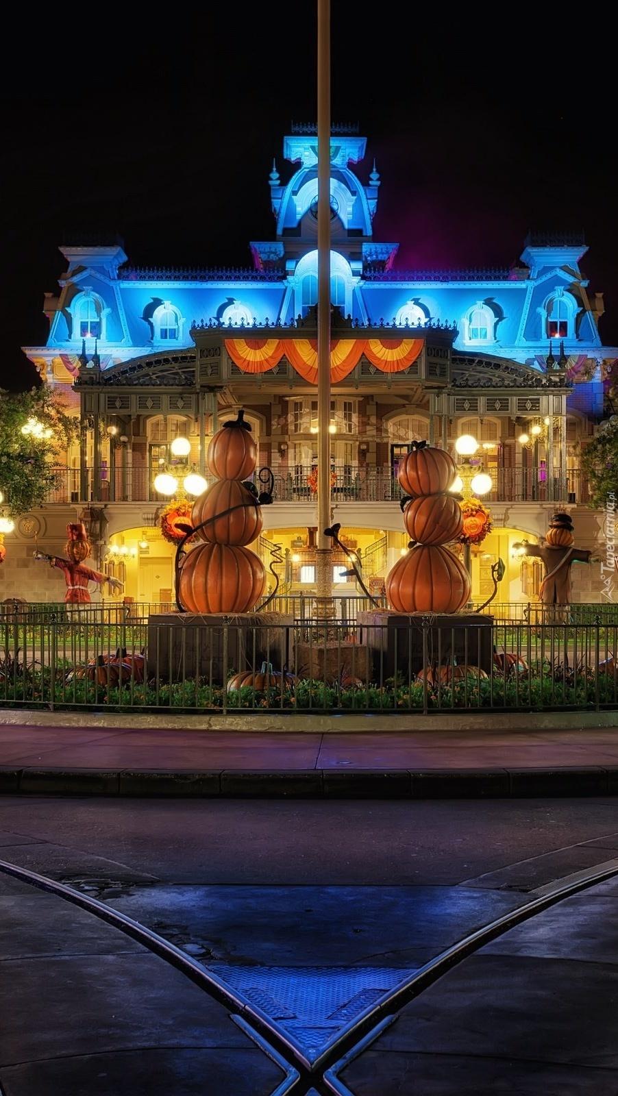 Disneyland nocą