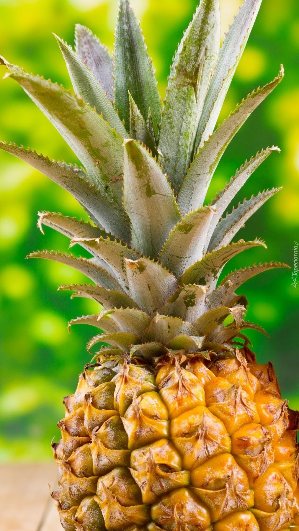 Dojrzały owoc ananasa