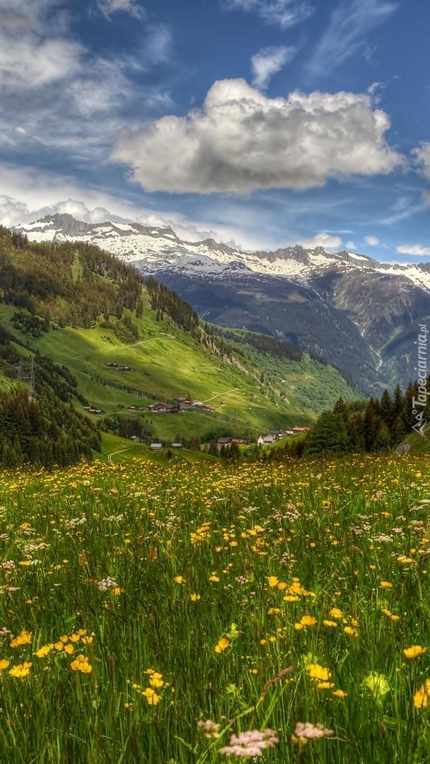 Dolina Surselva w Szwajcarii wiosną